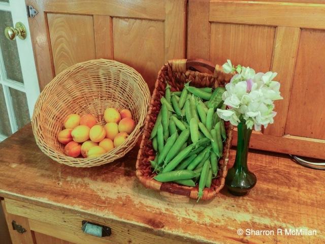 July harvest apricot,peas, sweet peas