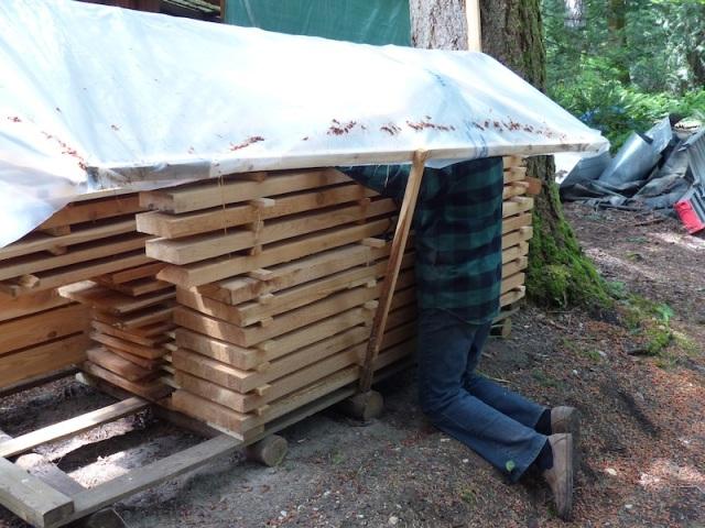 wood lumber pile 2